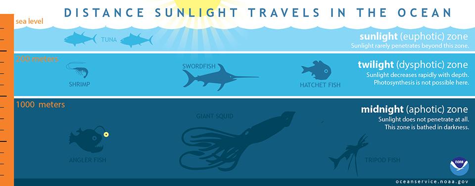 Illustrasjon av lys i havet (NOOA).